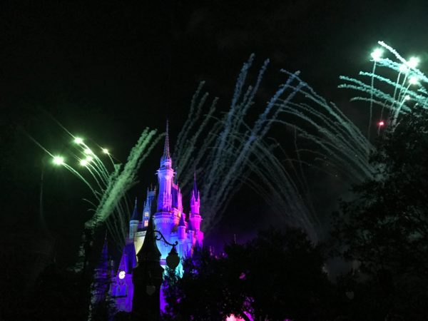 Disney World Fireworks